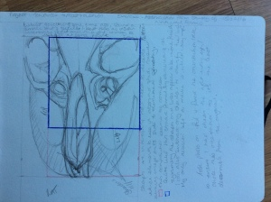 Initial drawing and compositional options